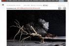 """Seit dem 24. Dezember 2010 wird """"NachtZüge"""" in der Onlineausgabe des Nachrichtenmagazins """"Stern"""" vorgestellt. Die Fotografiesektion zeigt eine Bildstrecke mit 10 Fotos:"""